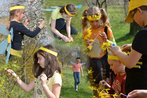 Stowarzyszenie pszczelarzy lubelskich